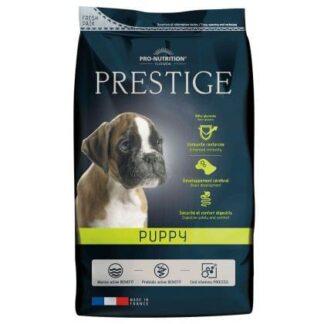 prestige puppy ksiri trofi skylou