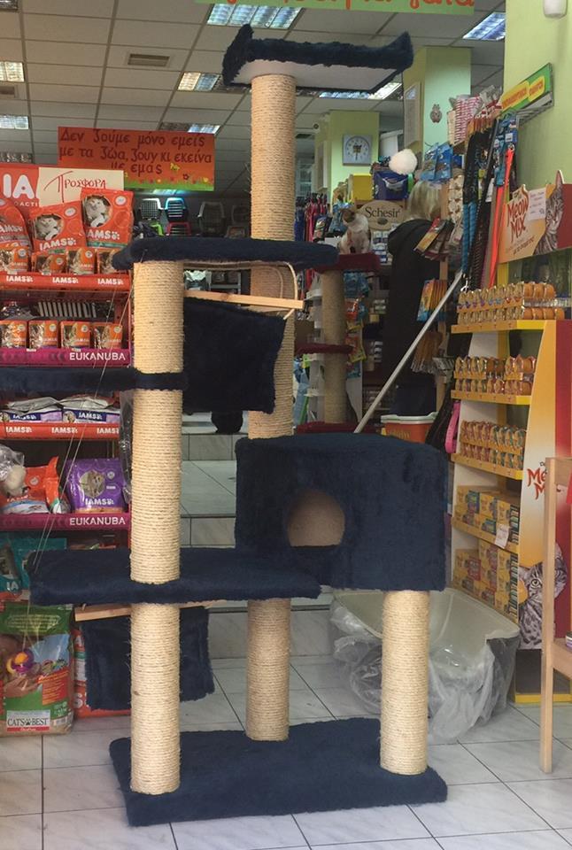 0bfccb369455 Ονυχοδρομιο Γάτας Ελληνικής κατασκευής