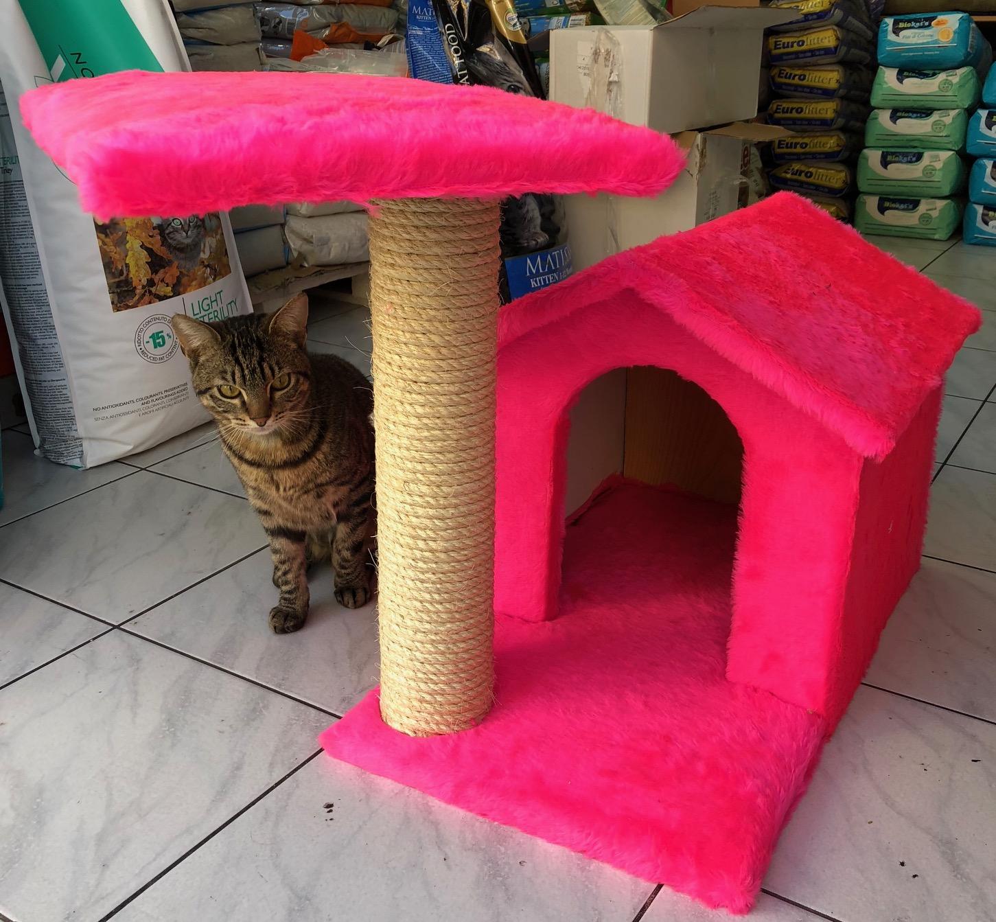 8c6c892d36a4 Σπιτάκι ονυχοδρόμιο γάτας ελληνικής κατασκευής