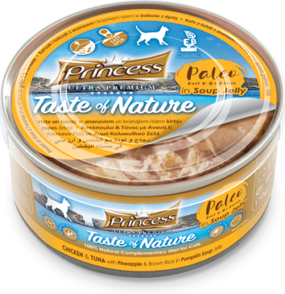 Princess Paleo Chicken & Tuna with Pineapple & Brown Rice in Pumpkin Soup Jelly