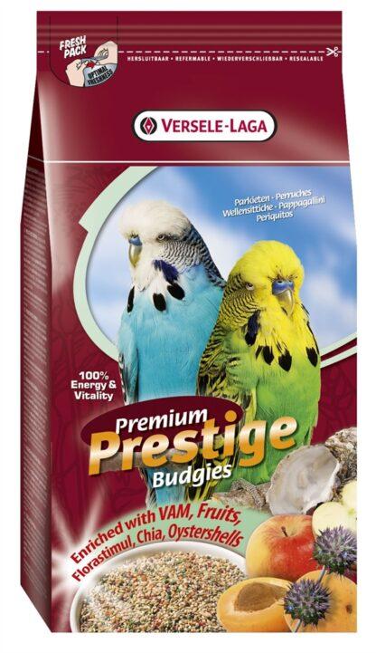 premium prestige versele laga budgies