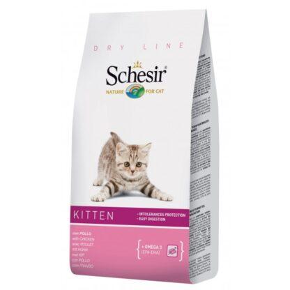 schesir-cat-dry-kitten