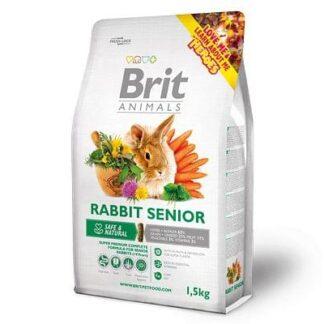 Brit_Animals-RABBIT_SENIOR