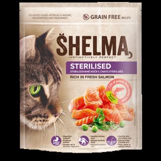 Shelma ksiri trofi gatas solomos